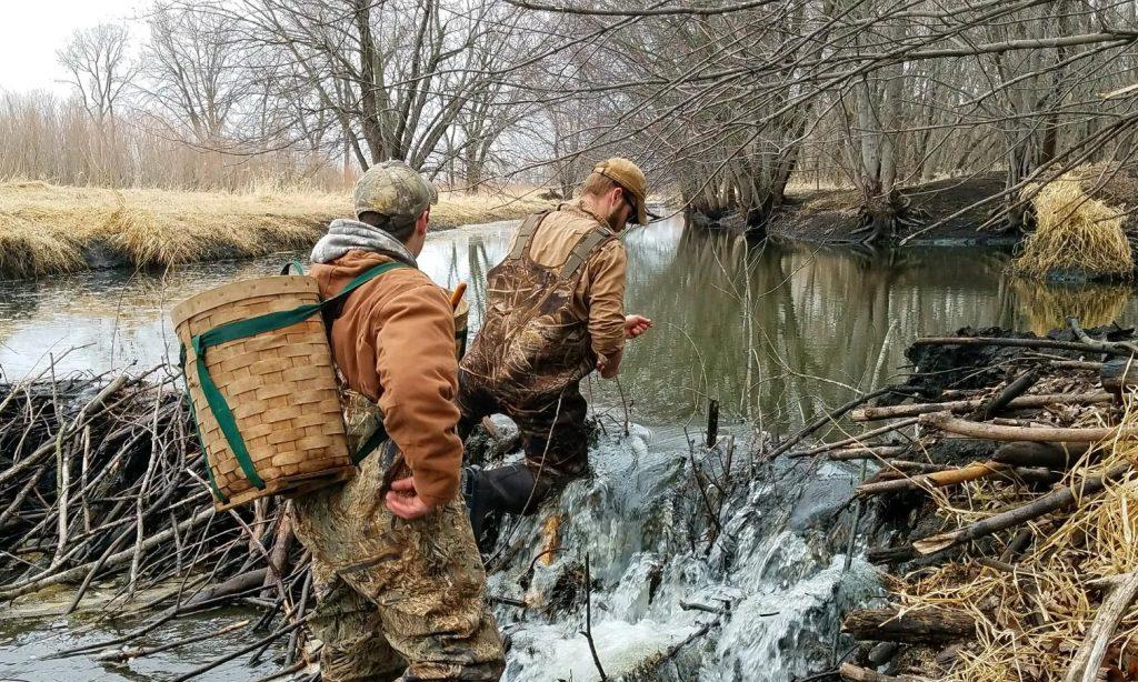 Environmental Studies degree at Iowa Lakes