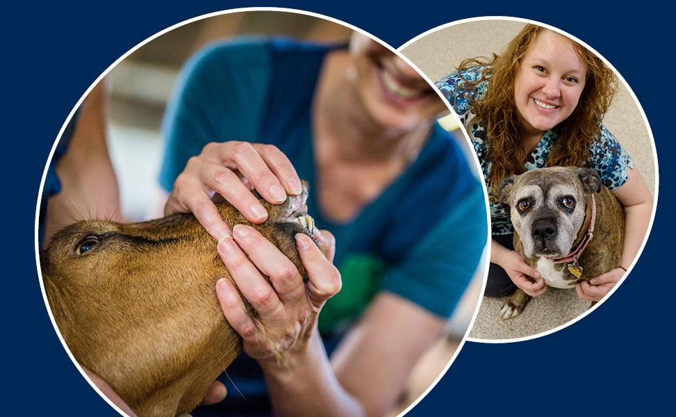 Veterinary Technician_Landing Page_A_0519_2b