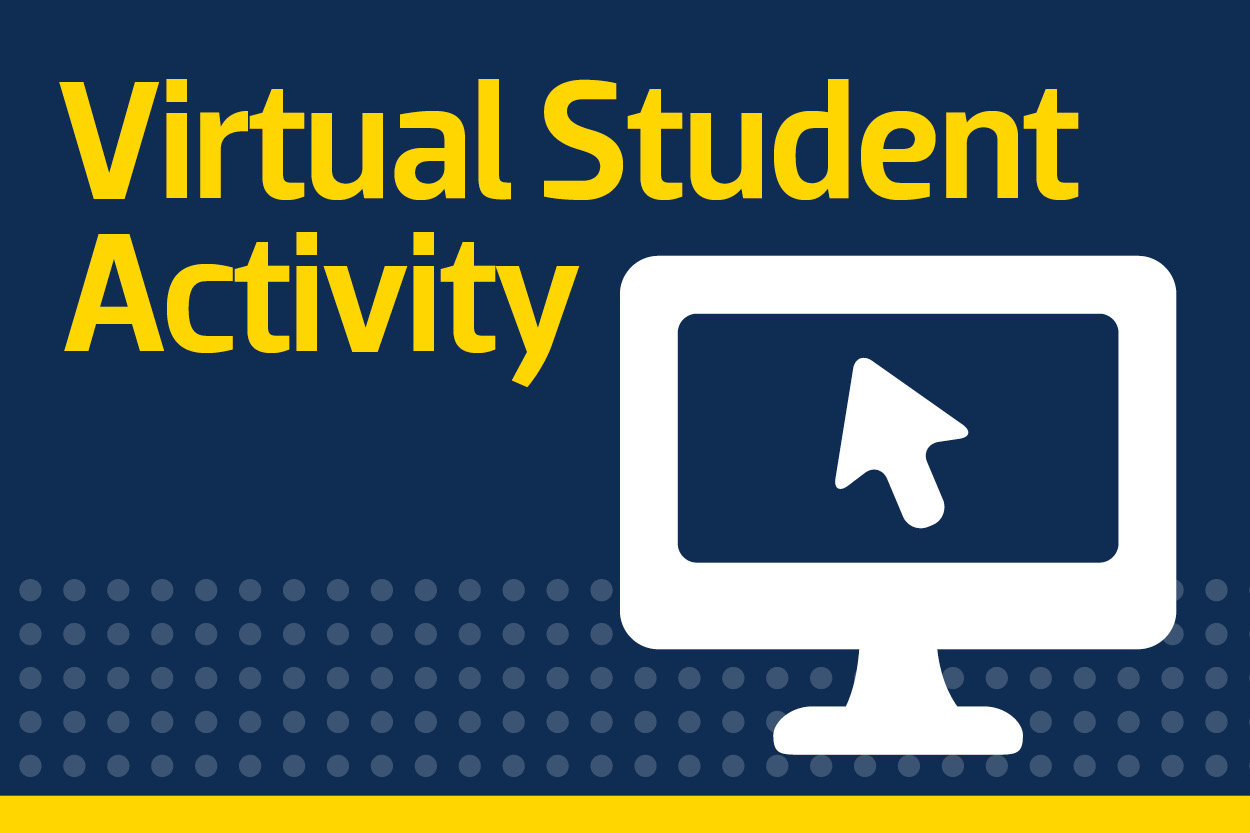 Virtual Student Activity